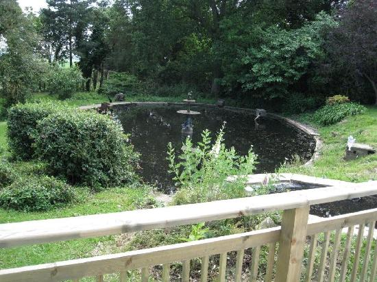 The Eiders Bed and Breakfast: View from bedroom