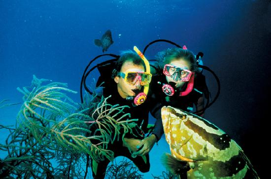 Providenciales: Scuba diving, oh my God