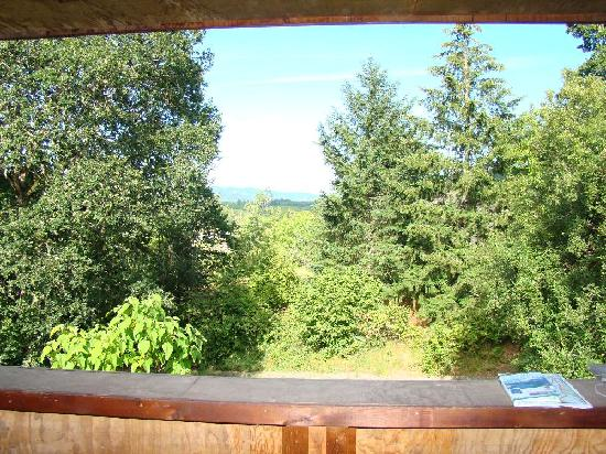 Avellan Inn: Private Deck with Beautiful Views (Emily's Room)