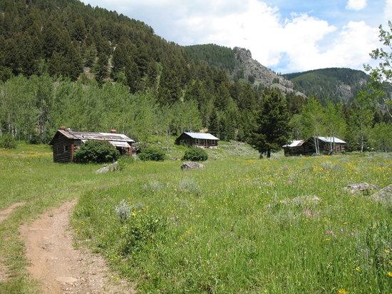 SW Montana 7-9-06