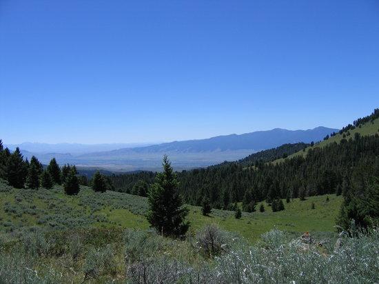 Montana: SW Montana 7-14-05