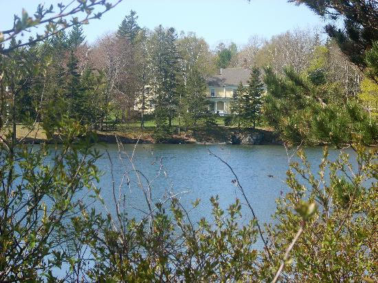 Pilgrim's Inn: Mill pond