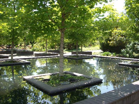 Reflecting Pools - Picture of Oregon Garden, Silverton - TripAdvisor
