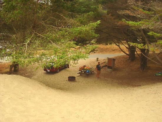 Bodega Dunes Campground: Looking down from the top of the dune onto our site