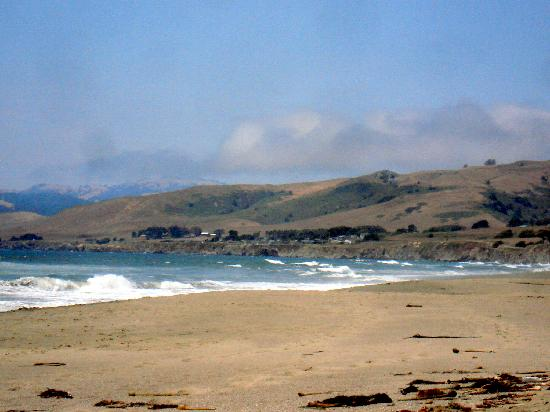 Bodega Dunes Campground : Pacific ocean walking distance from Bodega Dunes
