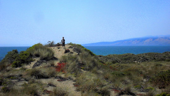 Bodega Bay, Kalifornien: A neat dune protrusion overlooking the Ocean