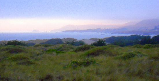 Bodega Dunes Campground : The View from the trail