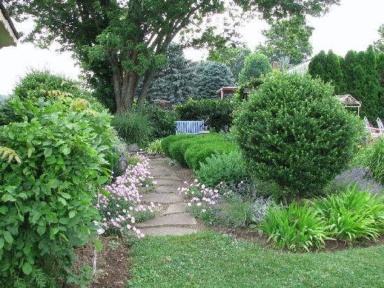 Lavender Patch Bed & Breakfast : The picturesque garden