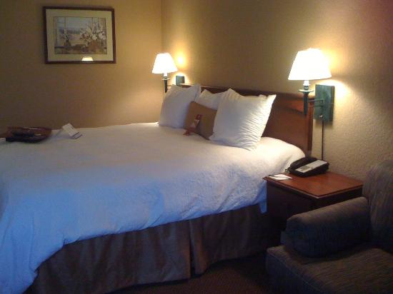 Hampton Inn Nashville / Vanderbilt: King room (w/ sofa)