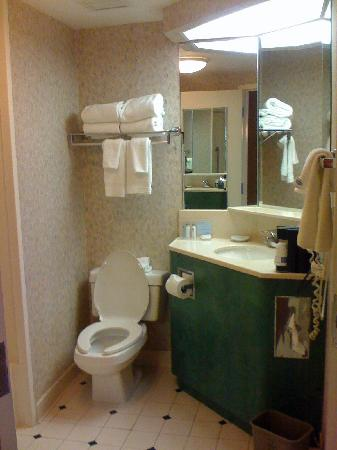 Hampton Inn Nashville / Vanderbilt: Bathroom