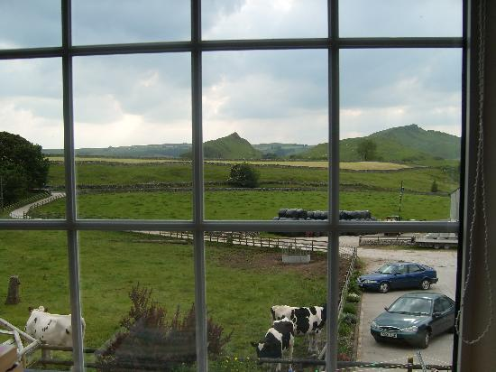 Fernydale Farm: View from our room (twin room)