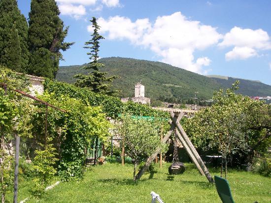 Palazzo Minciotti: Part of the garden