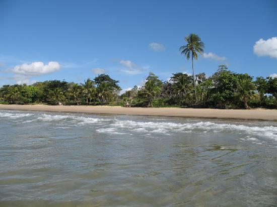 A Tropical Escape B&B: Mission Beach