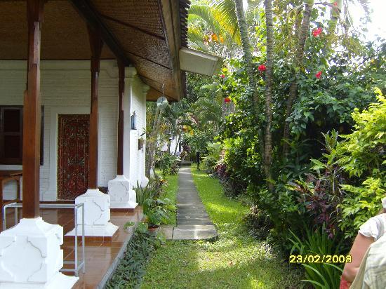 Prima Cottage: prima cotage garden