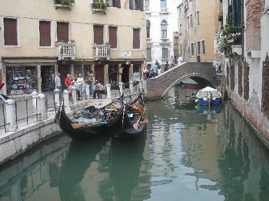 A Venice Fish The Balcony Hostel