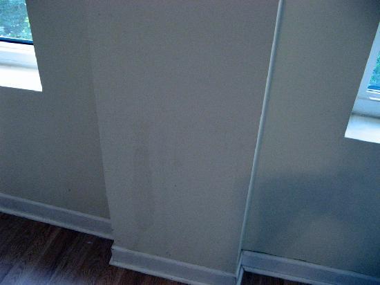 Pratt Shore: More wall stains