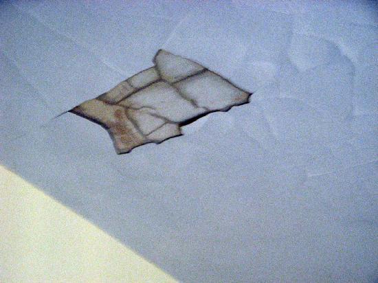 Pratt Shore: Ceiling
