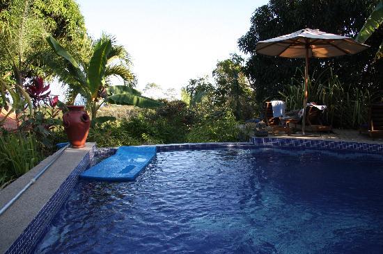 Nature Lodge Finca los Caballos: Pool