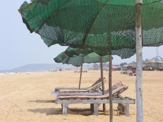 Candolim Beach: Sun Beds
