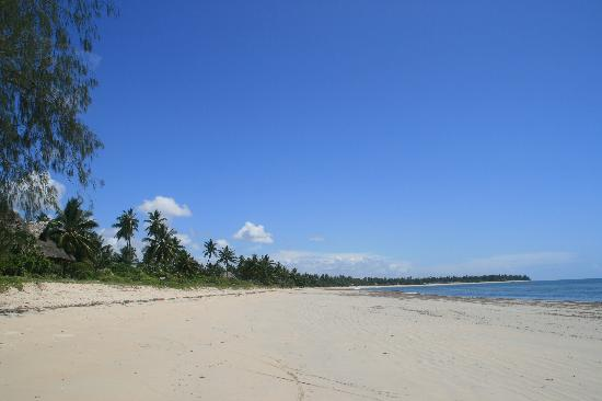Pangani, Tanzania: Alone at the beach