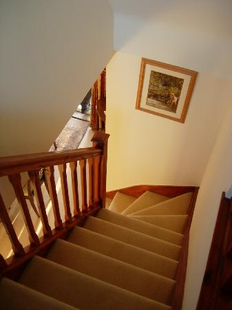 Stonecroft Bed and Breakfast: Stairs down to breakfast room