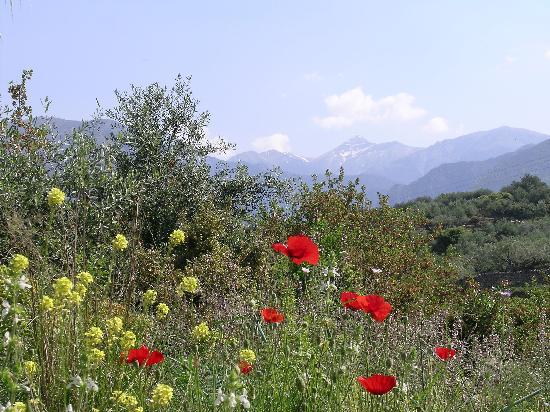 Kardamili, Greece: Taygetos mountains in the spring