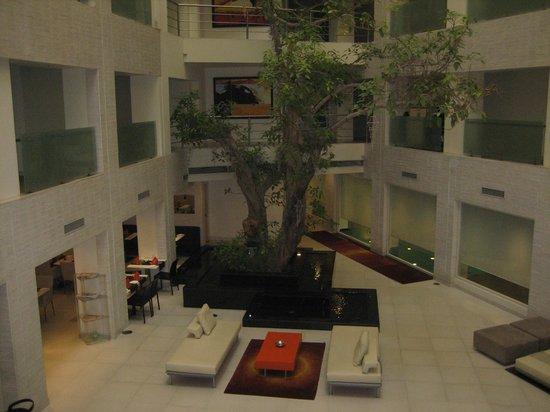 Atrium Avalon Courtyard
