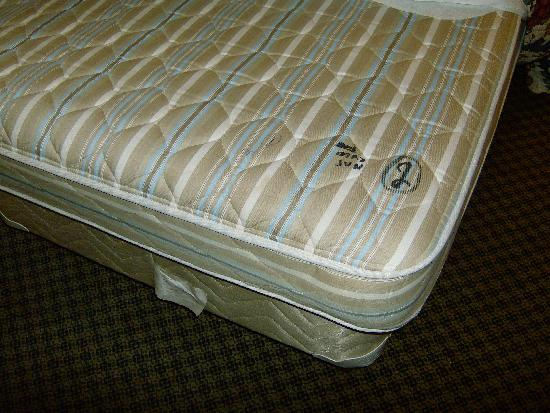 Holiday Inn Express San Diego N - Rancho Bernardo: My mattress was a little on the hard side.