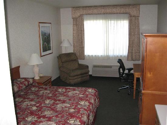 La Quinta Inn & Suites Idaho Falls: Room - King Bed