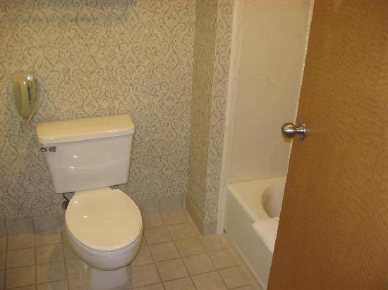 La Quinta Inn & Suites Idaho Falls: Bathroom