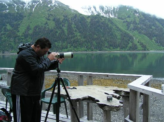 Alaska's Sadie Cove Wilderness Lodge: watching the eagles & mountain goats