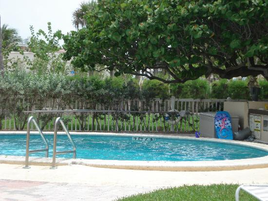 Lauderdale by the Sea, FL: pool