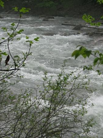 River & Trail Outfitters: North Branch Potomac - May 3rd
