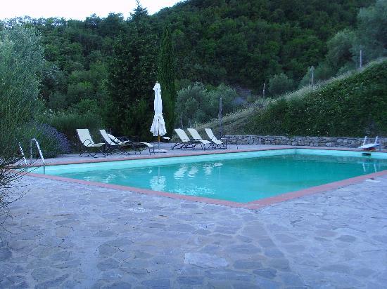 Castello di Gaiche: Pool