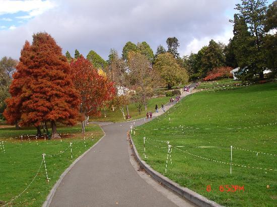 Tasmânia, Austrália: Botonical garden