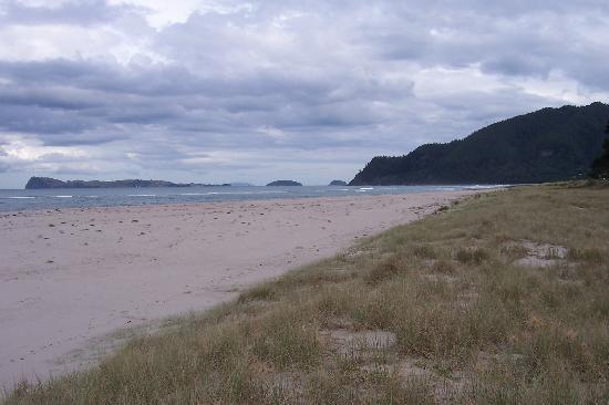 Grand Mercure Puka Park Resort: the beach