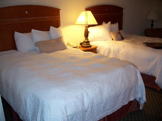 Hampton Inn St. Louis/Fairview Heights: Our room - the lumps on the bed are actually from the quilted insert that I mentioned earlier