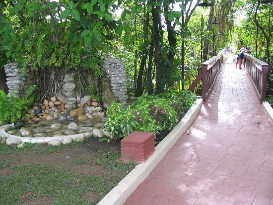 BlueBay Villas Doradas Adults Only: Petite chute décorative et la passerelle reliant la plage au site de l'hôtel
