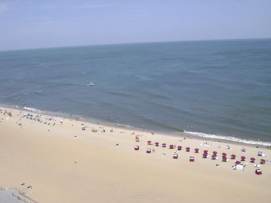 Virginia Beach View from Ocean Beach Club