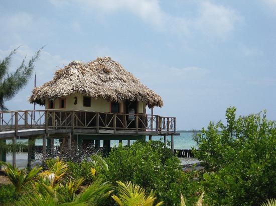 Thatch Caye, a Muy'Ono Resort : my beloved cabana