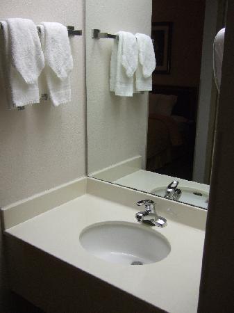 Comfort Inn Northeast: Rm 237 Sink
