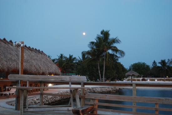 Coral Bay Resort: Beautiful night sky