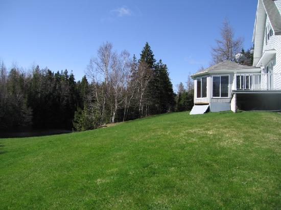Country Charm Bed & Breakfast: Country Charm - lawn and forest