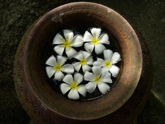 Thipwimarn Resort: Vaso di fiori sul vialetto