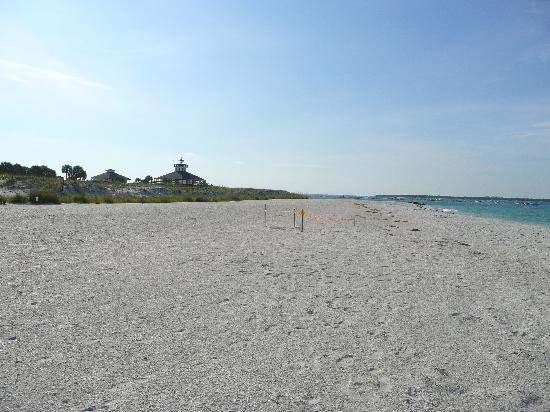 Southwest Gulf Coast, FL: Boca grande lighthouse