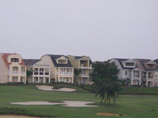 Reunion Resort, A Salamander Golf & Spa Resort: golf course homes