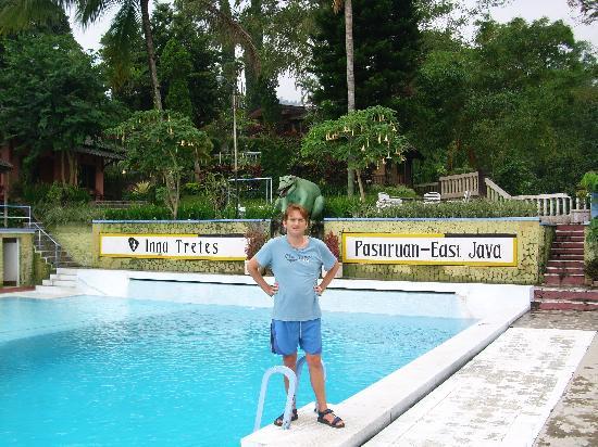 Inna Tretes Hotel: Hotel pool