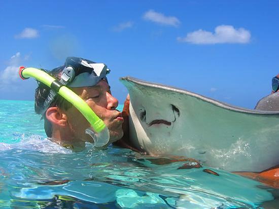 Bora Bora, Französisch-Polynesien: expose yourself to nature!  really, it's worth it!