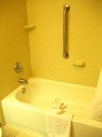 Hampton Inn San Antonio Downtown (River Walk): Tub
