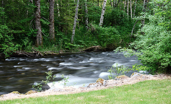 BaseCamp Cottages: The creek, taken from the back deck.